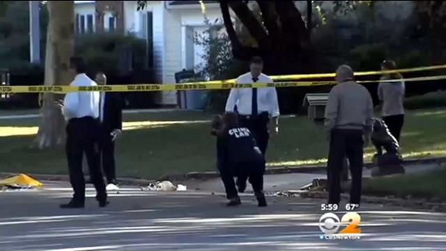 Fleeing Car Critically Injures N.Y. Officer
