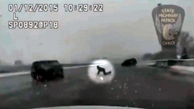 Dashcam Shows Man Ejected From Car