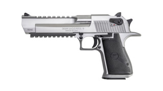 Stainless Steel Desert Eagle .50 AE