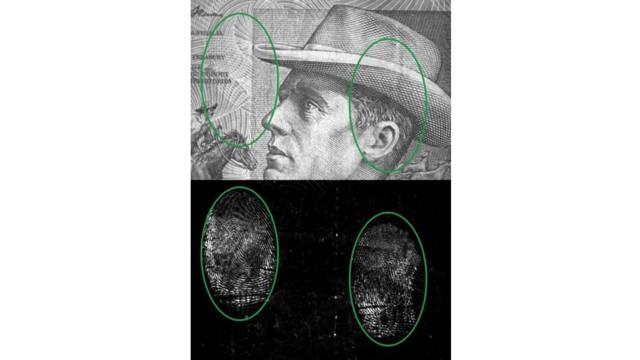 Spirulina Fingerprint Dusting Powder