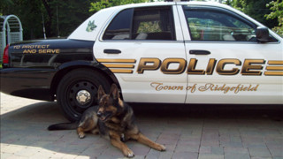 Conn. Police K-9 Honored With Last Ride