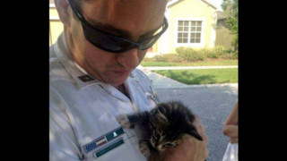 Florida Deputy Saves Kitten From Storm Drain