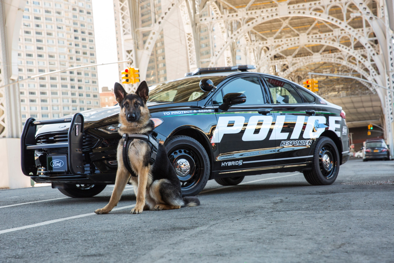 Ford Opens The Door For Police And Law Enforcement To Order All New 2019 Responder Hybrid Sedan