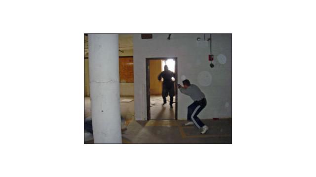 fightflightorfreeze_10250224.jpg