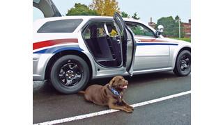 K9 Transport Unit for Dodge Magnum