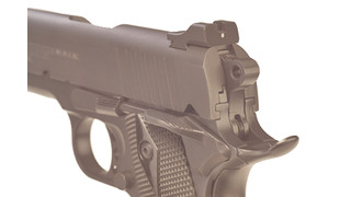 SlantPro sights
