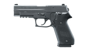 Sig SAUER DAK trigger system