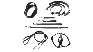 Tac-Black leather leads, collars and harnesses