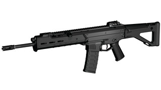 Adaptive Combat Rifle (ACR)