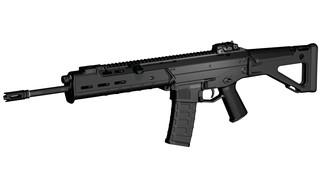 Adaptive Combat Rifle (ACR)
