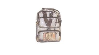 Yukon - Large Clear Backpack