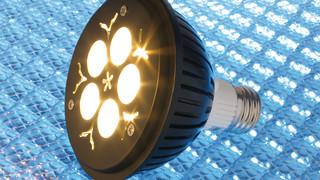 PAR30 Narrow-Beam Bulb