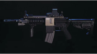 RIPR (Rifle Integrated Power Rail)