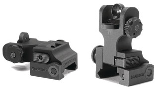 Quick Flip Dual Aperture Rear Sight