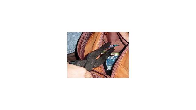 bagsearch1_10234074.jpg