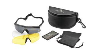 Sawfly Eyewear System