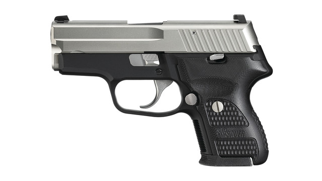 p224nickel_10623479.psd