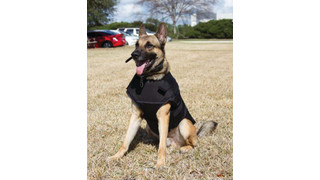 Protech Tactical - Bark-9 Carrier K9 Vest