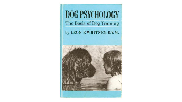 dog-psychology_10732702.psd