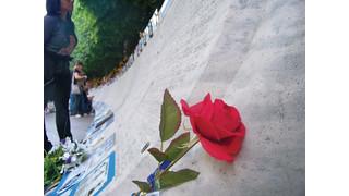 Life at the Memorial