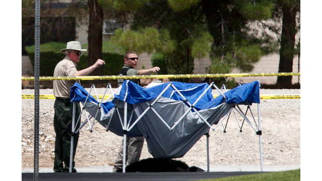 Vegas-Police-Kill-Chimp-After-Escape.jpg