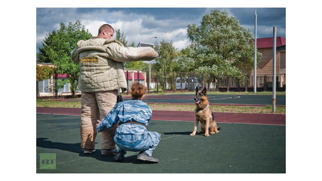 Canine Socialization is Important
