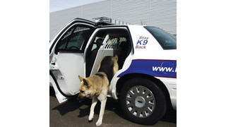 Care of the Canine and Equipment