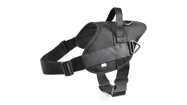 harness_10812657.psd