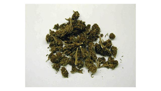 marijuana_10830256.psd