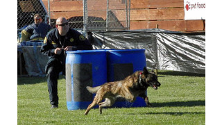 Selecting The Better K9 Handler