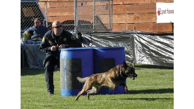 alameda-county-sheriffs-office_10841865.psd