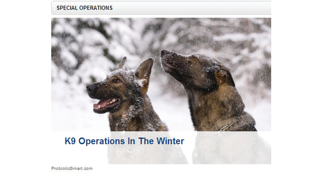 special-operations_10895854.psd