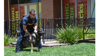 Officer Newscast: Bond Held by K-9s, Handlers Strong
