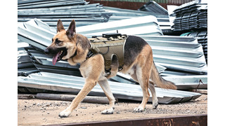 K-9 Guidance System (K-9GS2)