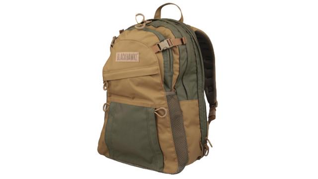 carrypackbeauty1-zps92b07212_10919536.psd