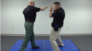 Punch Defense: Defensive Tactics Technique