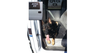 Ford F-150 Pickup K9 Kennel