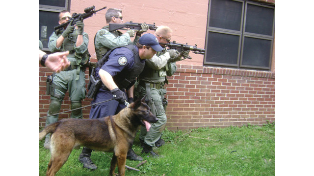 Canines and Gunfire