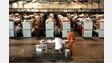 Judges Extend Calif. Prison Crowding Deadline