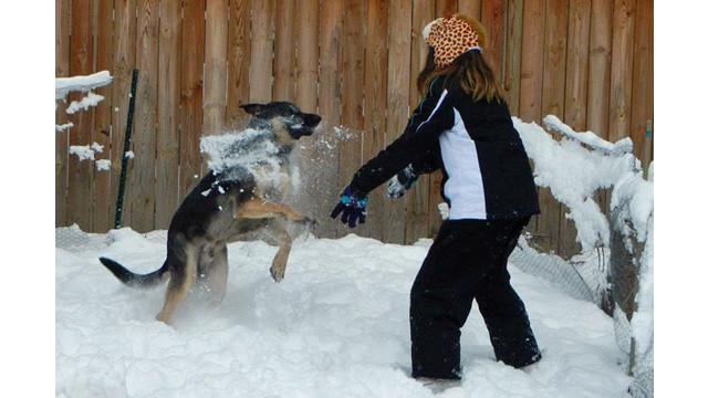 gibbs-snow1_11189600.psd