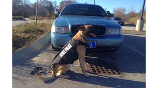 Maine State Police K-9s Get Protective Vests