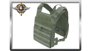 Shellback Tactical Banshee Rifle Plate Carrier
