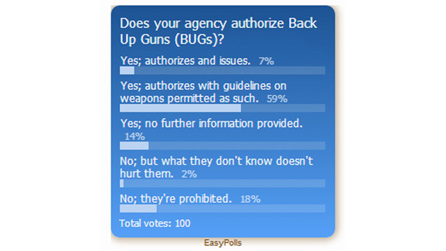 Back Up Gun (BUG) Poll