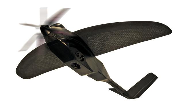 nighthawk-cutout.tif