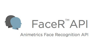 FaceR API for Face Recognition Applications
