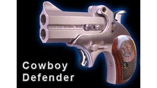 The Cowboy Defender