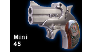The Bond Arms Mini