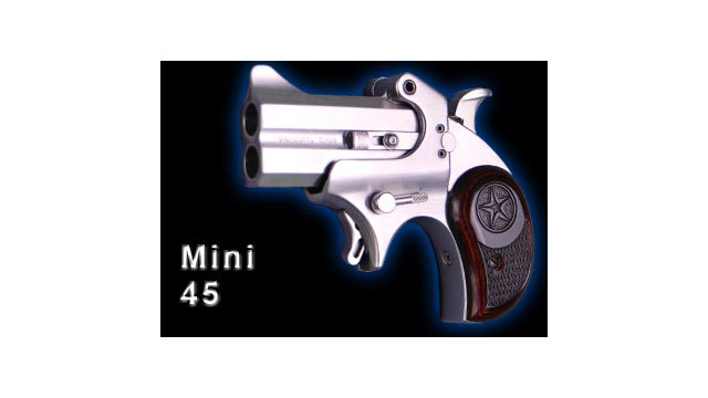 bond_arms_mini_451_d1q7scquyoisa.jpg