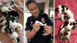 Phoenix Officer Cares for Abandoned Kittens